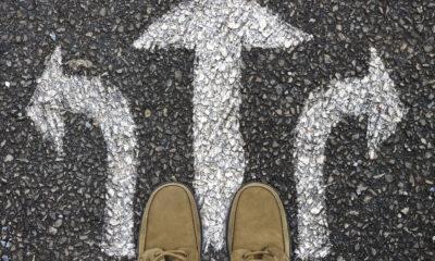 Como andam nossas escolhas, aquelas que tivemos o consentimento Divino de realizar, o nosso livre arbítrio? Será que estamos conscientes que